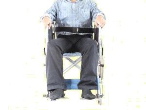 Wheel-Chair-Belt-pedderjohnson